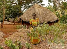 New analysis suggests gender differences in how farmers adapt to climate-smart agriculture | CCAFS: CGIAR research program on Climate Change, Agriculture and Food Security