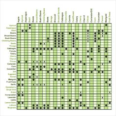 Square Foot Gardening Chart Jpg  Px Via Inchsurvival