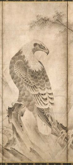 """Detail. """"Hawk-Eagle in a Pine Tree"""" or """"Birds of Prey"""" pair of folding screens. Eagle - right screen. Shichô zu byôbu 鷙鳥図屏風 Japanese Edo period 17th century Soga Nichokuan (Japanese, active about 1625–1660)"""
