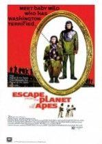 Maymunlar Cehennemi 3 (1971) Türkçe Dublaj izle