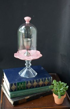 Hey, I found this really awesome Etsy listing at https://www.etsy.com/listing/165494507/cloche-glass-dome-on-pink-flower-plate