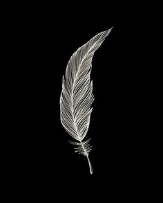 One Feather - White & Black Art Print by jenposford Black And White Art Drawing, Black Paper Drawing, Black Art, Feather Wallpaper, Black Wallpaper, Feather Drawing, Scratch Art, Feather Tattoos, Dark Photography