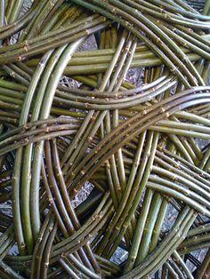 Willow gardener. - Tom Hare. #Willow #Weaving #TomHare #Art #Installation #LandArt
