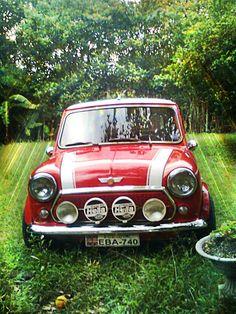 535 Best Miniac Images Classic Mini Cars Mini Cooper S