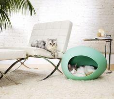 pEi Pod 74194 Pet House mint, Kissen gelb / weiß Punkte: Amazon.de: Haustier
