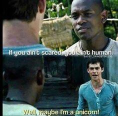 Ha imagine Thomas as a unicorn!!! That should be a thing!!!