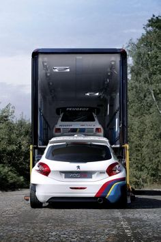 Peugeot 205 T16 and Peugeot 208 T16