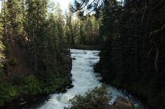Gorgeous crystal stream in Central Oregon, where there are nearly 300 days of sunshine, abundant outdoor recreation, pristine wilderness and charming small towns. Vacation Paradise with sparkling rivers and alpine lakes.