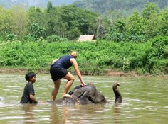 Elephant Trekking in Luang Prabang, Laos via South Eastern Asia Backpacker