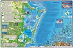 caribbean map cancun guide and dive laminated 2008 by frankos maps ltd