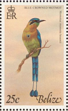 Blue-diademed Motmot stamps - mainly images - gallery format