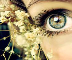 Ideas for eye photography pretty Copper Eye Makeup, Eye Makeup Steps, Eye Makeup Art, Makeup For Brown Eyes, Bobbi Brown, Eyeshadow Step By Step, Eyes Artwork, Eye Sketch, Color Meanings