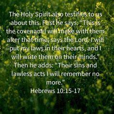 David Castro's Images   The Bible App   Bible.com