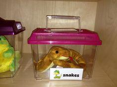 Preschool Pet Shop Theme