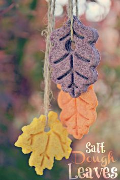 Salt dough leaves! A fun hands-on sensory craft for kids this fall! Makes great fall decoration for kids classroom.