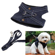 Dog Harness Pet Puppy Vest Leash Walking Traction Rope Canvas Harness Leash for Small Dog Cat Puppy Pet AccessoriesTotally adorable! This dog harness will look Pet Puppy, Pet Dogs, Pets, Really Cute Dogs, Dog Clothes Patterns, Dog Vest, Dog Pattern, Dog Dresses, Dog Coats