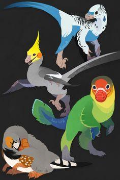 More domestic dino-birds! From top to bottom: a blue parakeet, a grey cockatiel, a Fischer's lovebird, and a zebra finch