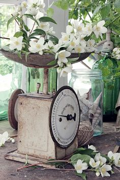 old scales, rustic wood and simple blooms Vintage Farmhouse, Vintage Kitchen, Farmhouse Decor, Farmhouse Bedrooms, Farmhouse Kitchens, Farmhouse Style, White Cottage, Cottage Style, Farm Cottage