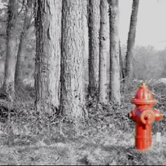 hmmm, this fire hydrant is in an awfully strange place... someone could potentially get hurt.