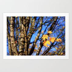 Last leaves   Art Print by Annie Japaud   - $18.72 Leaf Art, Annie, Leaves, Art Prints, Image, Art Impressions