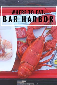 Top Places to Get Lobster in Bar Harbor, Maine Bar Harbour, Bar Harbor Me, New England Cruises, New England Travel, Acadia Maine, Maine Road Trip, Canada Cruise, Visit Maine, East Coast Travel