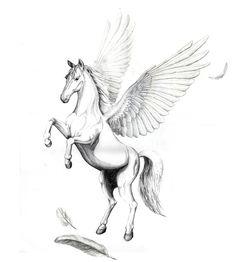 Pegasus - King of Horses Pencil Drawings Of Animals, Horse Drawings, Tattoo Drawings, Tattoo Art, Pegasus Tattoo, Horse Tattoo Design, Feather Tattoo Design, Tattoo Designs, Greek Mythology Tattoos