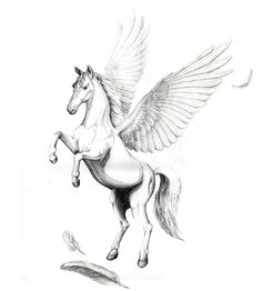 Tribal Pegasus Tattoo