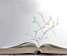 Open Book And Paper Letters Tree Concept Stock Photo - Image of idea, learn: 31891244