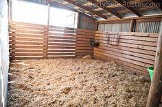Austin tx horse property