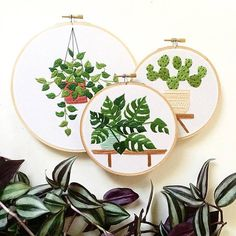 Entrevistamos a Sarah Benning, bordadora de plantas