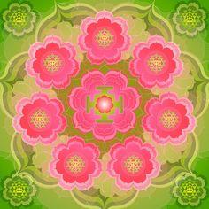 Rose Lotus by Sarah Niebank Hoffman
