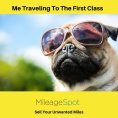 Me Travelling To The First Class Credit Card Points, First Class, The One, Travelling