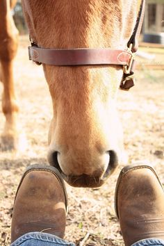 A few things you need in life: Boots and a horse ♥. I'm doing this with my future horse <3