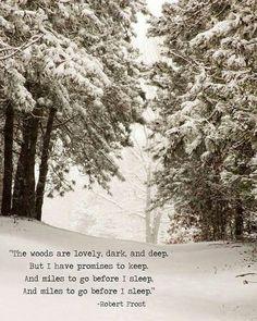 Snowscape... ~rw