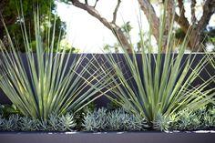 Garden Design: Caringbah   Secret Gardens