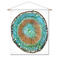 Naturalis Unlimited - Stem cross section II doek Cross Section, Tapestry, Design, Home Decor, Hanging Tapestry, Tapestries, Decoration Home, Room Decor
