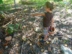 Collecting rocks, acorns, sticks, & leaves