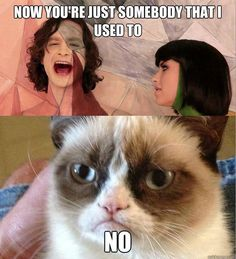 Grumpy Cat http://knowyourmeme.com/memes/grumpy-cat  about Gotye's song https://en.wikipedia.org/wiki/Somebody_That_I_Used_to_Know