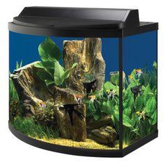 Top Fin 40 Gallon Aquarium Hood Combo Petsmart 119