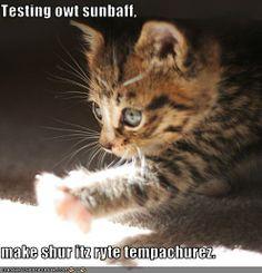 Sunbaff
