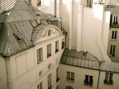 THE ROOF TOPS OF PARIS