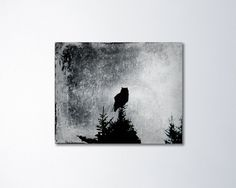 Owl canvas art. Ready to hang fine art canvas gallery wrap.  Title: Wisdom Size: please select size from the above drop-down menu  My art is professionally printed on fine art canvas and is wrapped around solid wood. These pieces have a depth of 1.5 inches. Sawtooth hangers and corner bumpers are preinstalled for smooth hanging.  Photographic print: www.etsy.com/listing/164717057/  ★ Spring Burst Photography ⇒ springburst.etsy.com ★  All images are copyright protected. ©Heidi F...