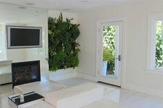 Ask the Expert 10 Tips for a Zero Waste Garden - Gardenista Living Room Plants, Living Room Green, Small Living Rooms, Living Walls, Vertical Plant Wall, Vertical Farming, Vertical Gardens, Indoor Plants, Indoor Garden