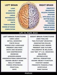 Left Brain vs Right Brain. Importance of Improving the Right Brain Skills - Awaken Mindset Health And Wellness, Health Tips, Health Fitness, Infj, Left Vs Right Brain, Anatomy And Physiology, Brain Anatomy, Brain Injury, Head Injury