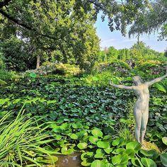 Tudtad, hogy Magyarország legnépszerűbb programkereső oldala Instagramon is jelen van? Kövess minket ott is! #szallas #fesztival #vasar #unnep #latnivalo #szabadido #kultura #csalad #gasztronomia #pihenes #mitcsinaljak #magyarorszag Plants, Instagram, Plant, Planets