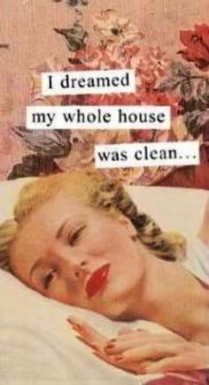 I dreamed my whole house was clean...