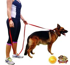 $15 Quirk & Ferg 8 Ft Long Extra Strong Red Dog Leash with Soft Padded Handle Quirk & Ferg http://www.amazon.com/dp/B00ELE5PE2/ref=cm_sw_r_pi_dp_FO0Nub1DGCYYE
