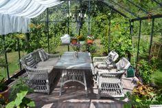 kasvihuone,puutarha,piha,parveke,terassi,pihan istutukset,puutarhakalusteet