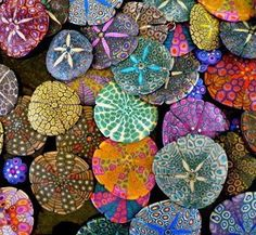 Colorful Sand-Dollars