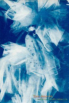 cianotipia , cyanotype , fotografía alternativa , Alternative Photography , photography development , revelado fotografico, burbusio